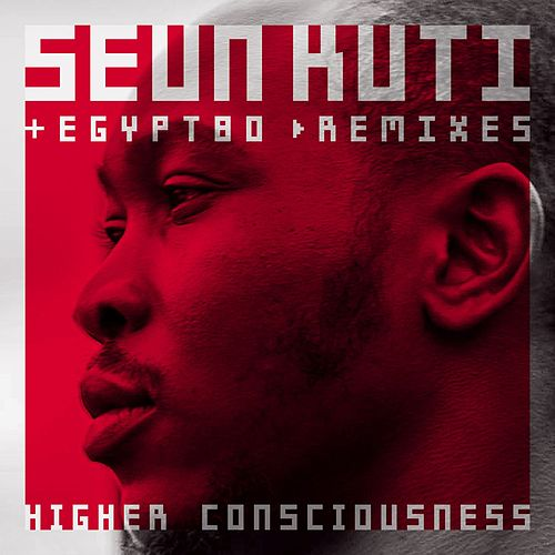 Higher Consciousness Remix EP by Seun Kuti