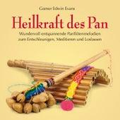 Heilkraft des Pan: Entspannende Panflötenmelodien by Gomer Edwin Evans