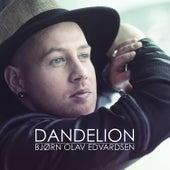 Play & Download Dandelion by Bjørn Olav Edvardsen | Napster