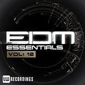 Play & Download EDM Essentials, Vol. 12 - EP by Various Artists | Napster