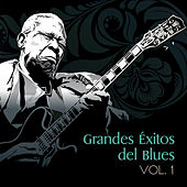 Grandes Éxitos del Blues, Vol. 1 by Various Artists