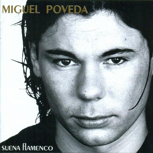 Play & Download Suena Flamenco by Miguel Poveda | Napster