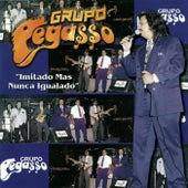 Play & Download 20 Aniversario... Fiesta Mix by Grupo Pegasso | Napster