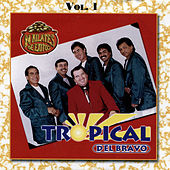 24 Kilates de Exitos, Vol. 1 by Tropical Del Bravo