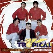 Play & Download Rockanroleando Con.. Tropical del Bravo by Tropical Del Bravo | Napster