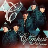 Play & Download Nunca Es Tarde by Los Compas del Terre | Napster