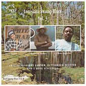 Louisiana Swamp Blues Vol. 3 by Larry Garner