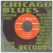 Chicago Blues Volume 2 by Various Artists