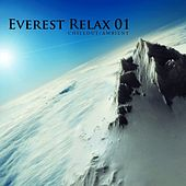 Everest Relax 01 by Various Artists
