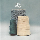 The Wonder City (Re-Issue) by Little Wings