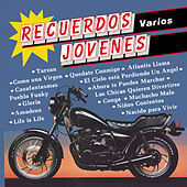 Recuerdos Jovenes by Music Makers