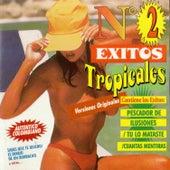 Éxitos Tropicales No. 2… (Versiones Originales) [Auténtico Colombiano] by Various Artists