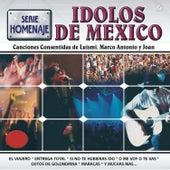 Play & Download Serie Homenaje Ídolos de México by Various Artists | Napster