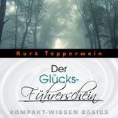 Der Glücks-Führerschein - Kompakt-Wissen Basics by Kurt Tepperwein
