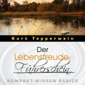Der Lebensfreude-Führerschein - Kompakt-Wissen Basics by Kurt Tepperwein