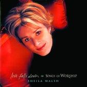 Love Falls Down by Sheila Walsh
