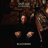 Blackbird by Sam Lee