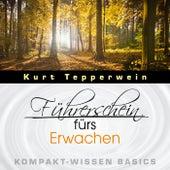 Führerschein fürs Erwachen - Kompakt-Wissen Basics by Kurt Tepperwein