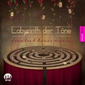 Labyrinth der Töne, Vol. 11 - Deep & Tech-House Music by Various Artists
