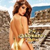 14 Cañonazos Bailables, Vol. 54 de Various Artists