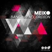 Banging Accordion by Meiko