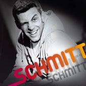 Schmitt by Martin Schmitt