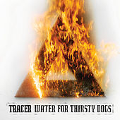 Play & Download Water for Thirsty Dogs by Tracer | Napster
