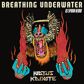Play & Download Breathing Underwater (DJ Spinna Galactic Soul Remix) by Hiatus Kaiyote | Napster