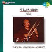 Monument of Strings: Sitar by Ravi Shankar