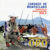 Play & Download Serie Raices De La Musica Norteña Volumen 1 by Lorenzo De Monteclaro | Napster