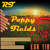 Poppy Fields by Rt
