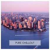Play & Download Pure Chillout by Various Artists | Napster