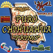 Play & Download Puro Chihuahua