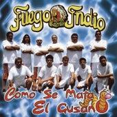 Play & Download Como Se Mata el Gusano by Fuego Indio | Napster