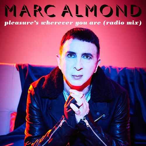 Play & Download Pleasure's Wherever You Are by Marc Almond | Napster