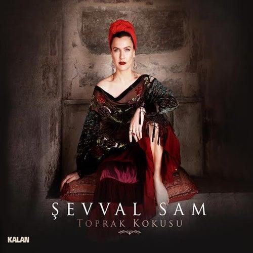 Play & Download Toprak Kokusu by Şevval Sam   Napster
