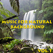 Play & Download Music For Natural Background, Vol.1 by Various Artists | Napster