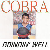 Play & Download Grindin' Well by Cobra | Napster