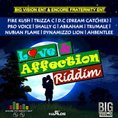 Love & Affection Riddim by Various Artists