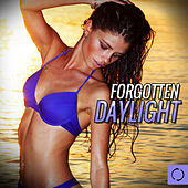 Play & Download Forgotten Daylight by Various Artists | Napster