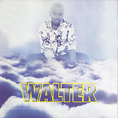 Play & Download Dzongololo by Walter | Napster