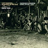 Lost Shadows: In Defence of the Soul (Yanomami Shamanism, Songs, Ritual, 1978) by David Toop