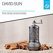 The Feng Shui Home by David Sun