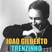 Play & Download Trenzinho by João Gilberto | Napster