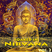 Play & Download Soaked In Nirvana, Vol.2 by Dune | Napster