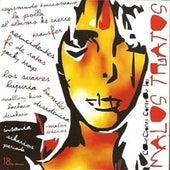 Canciones Contra los Malos Tratos by Various Artists