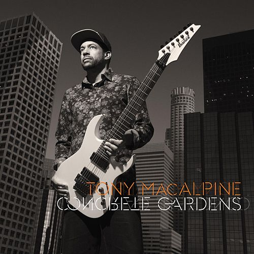 Play & Download Concrete Gardens by Tony MacAlpine | Napster