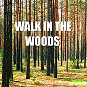Play & Download Walk In The Woods by Spirit | Napster