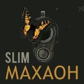 Махаон by Slim