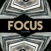 Focus: Luca d'arle by Various Artists